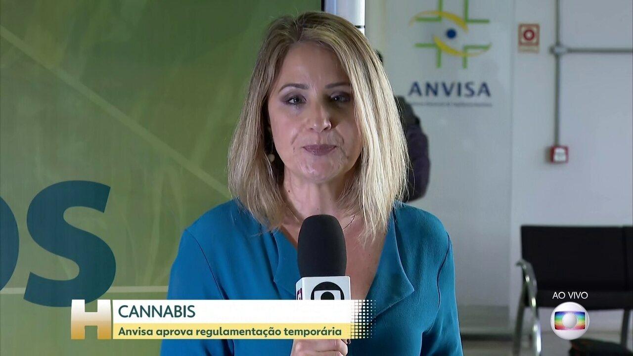 Anvisa aprova a regulamentação de produtos à base de cannabis para uso medicinal