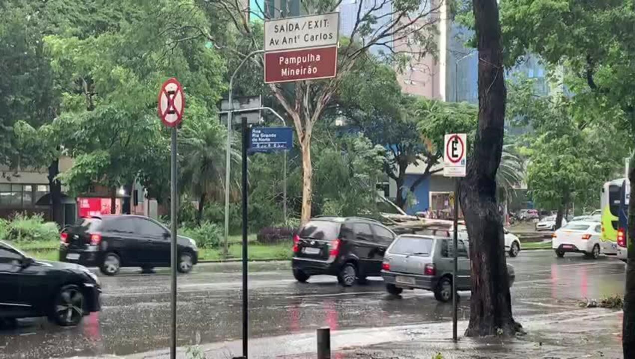 Queda de parte de árvore na altura da Praça Afonso Pena atrapalha trânsito em BH