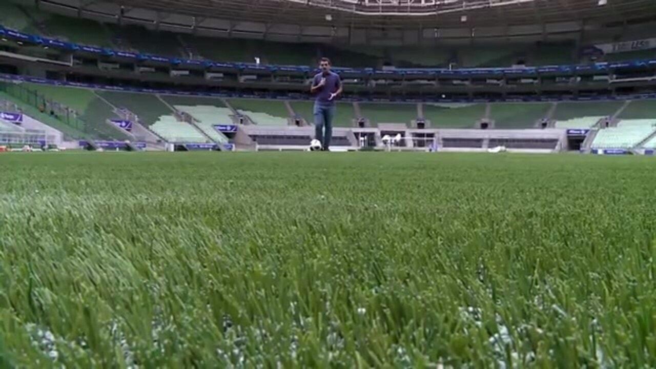 Repórteres testam o gramado sintético da arena do Palmeiras