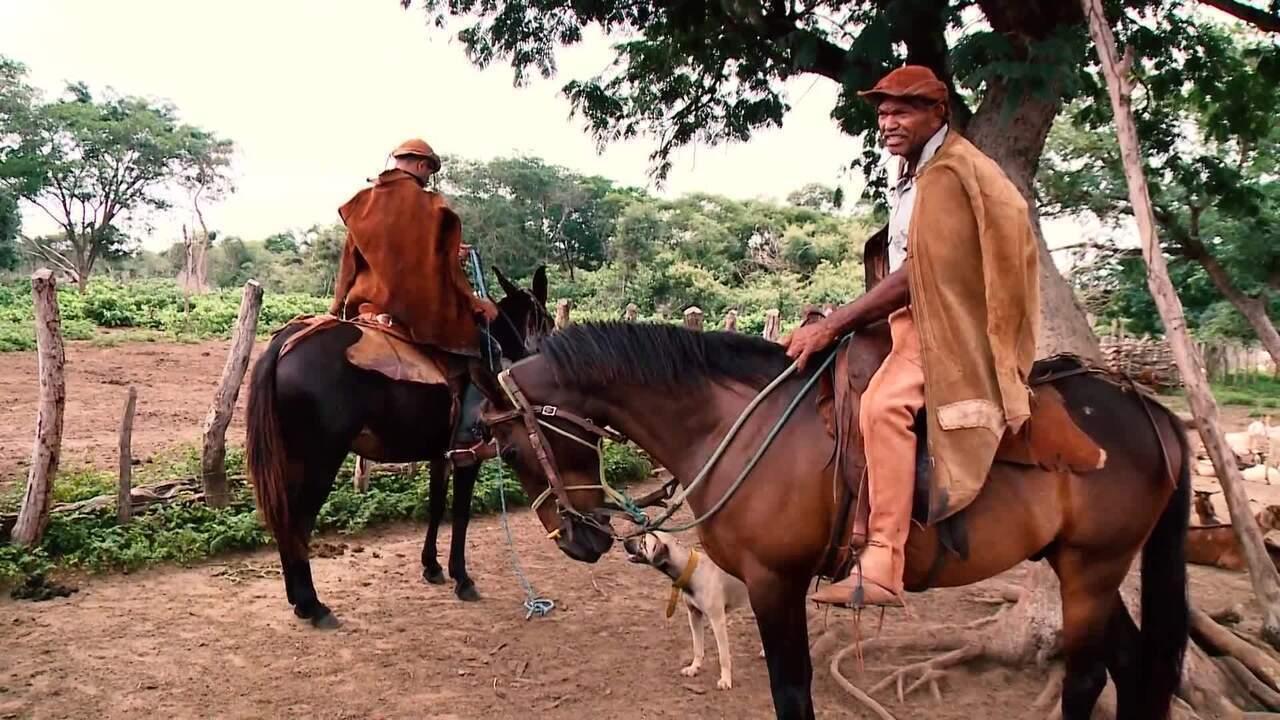 Conheça a cultura dos vaqueiros da região do Vale do Sambito