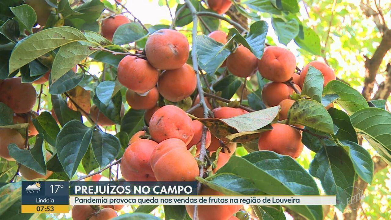 Pandemia provoca queda nas vendas de frutas na região de Louveira