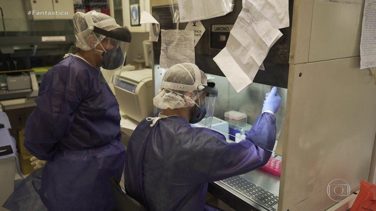 Casos de Covid-19 podem passar de meio milhão e apenas 8,9% são detectados, diz estudo