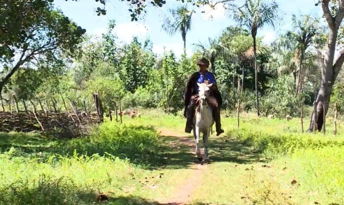 Cultura do vaqueiro é tradição em Lagoa Alegre