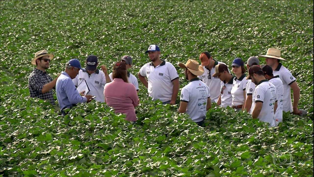 Expedição de alunos de agronomia pelo Brasil une ensino teórico e prático