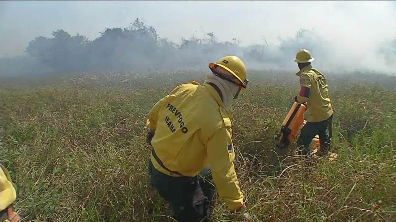 Ibama determina retorno dos brigadistas no combate aos incêndios florestais