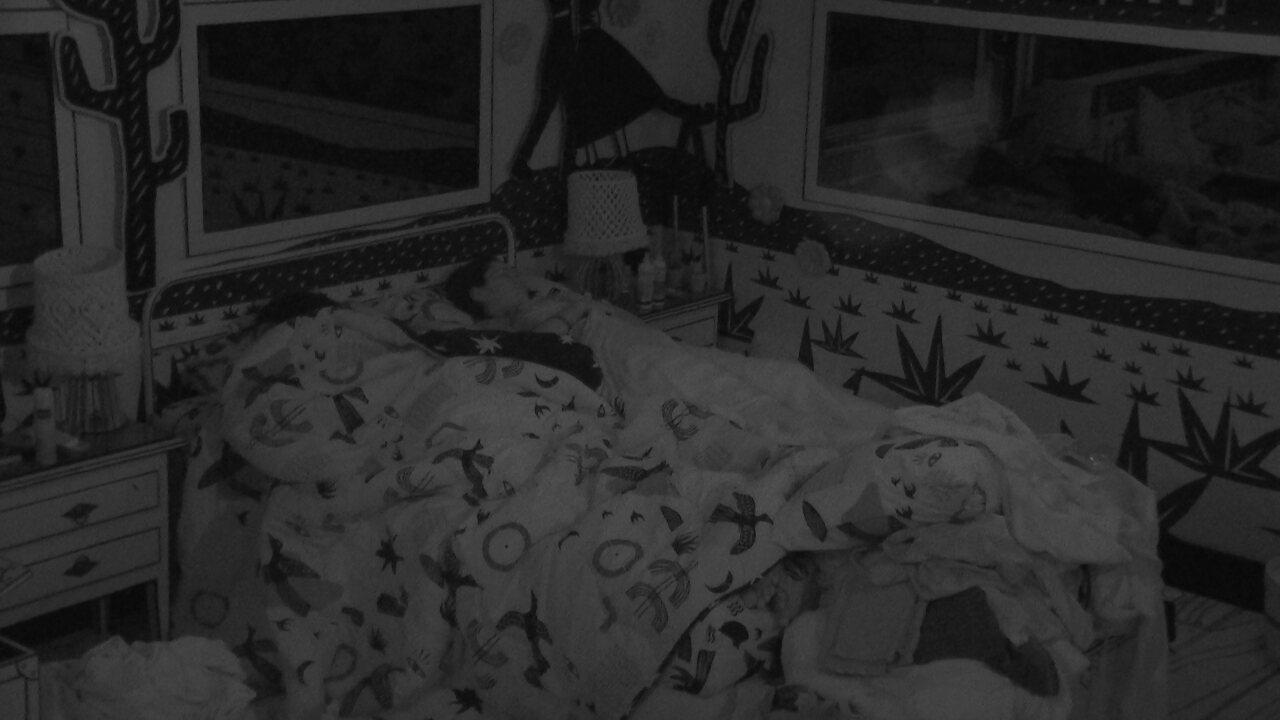 Em dia de formação de Paredão no BBB 21, todos dormem