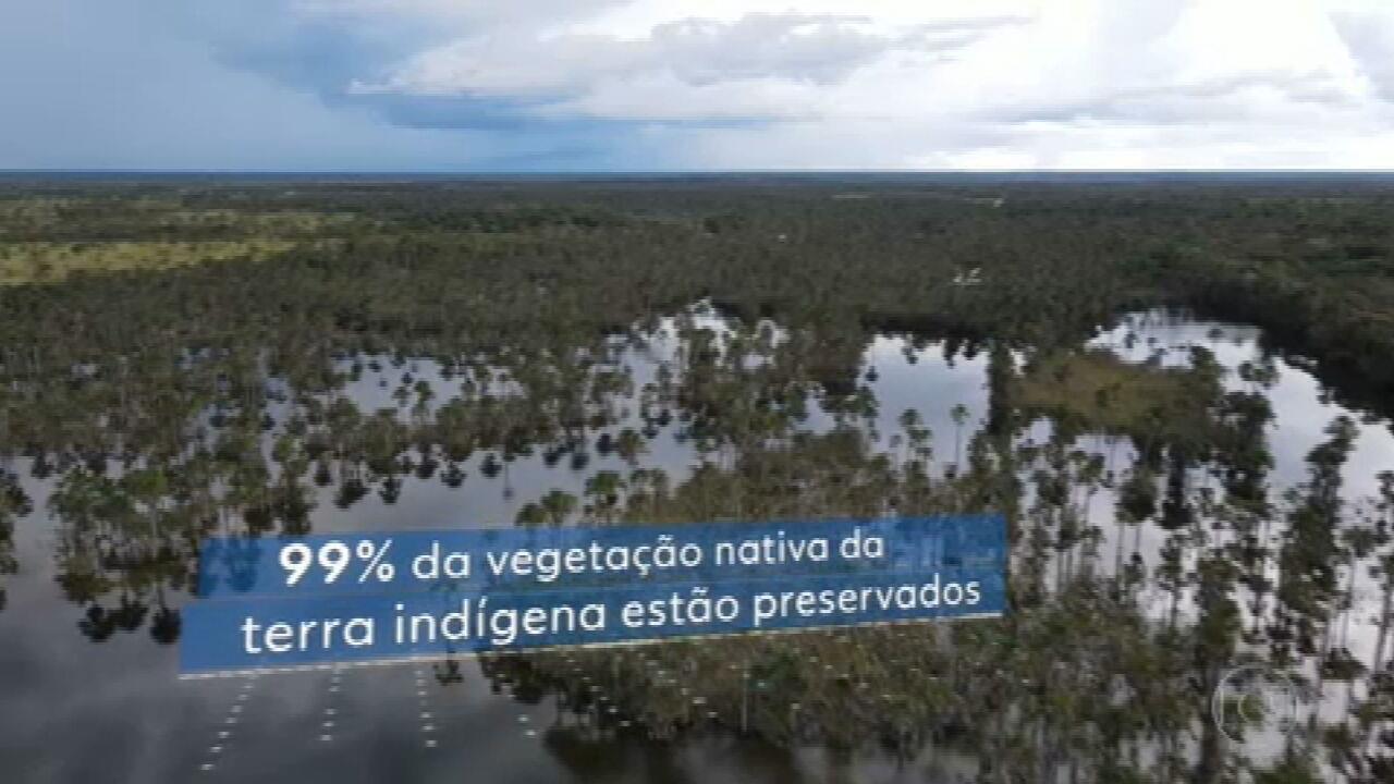Terra indígena do Xingu chega aos 60 anos e vê o desmatamento avançar em seu entorno